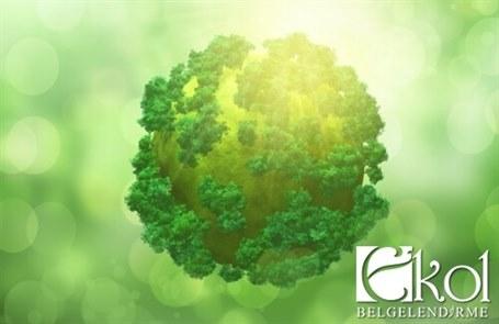 Carbon Footprint Calculation Service