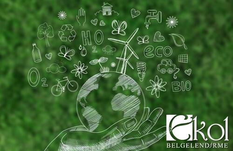 Carbon Footprint Reporting